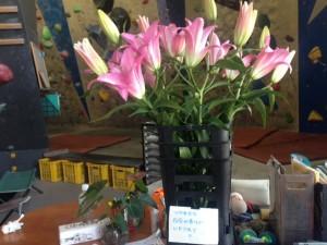 20151024お花