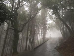 霧雨高良大社