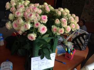 20150606お花